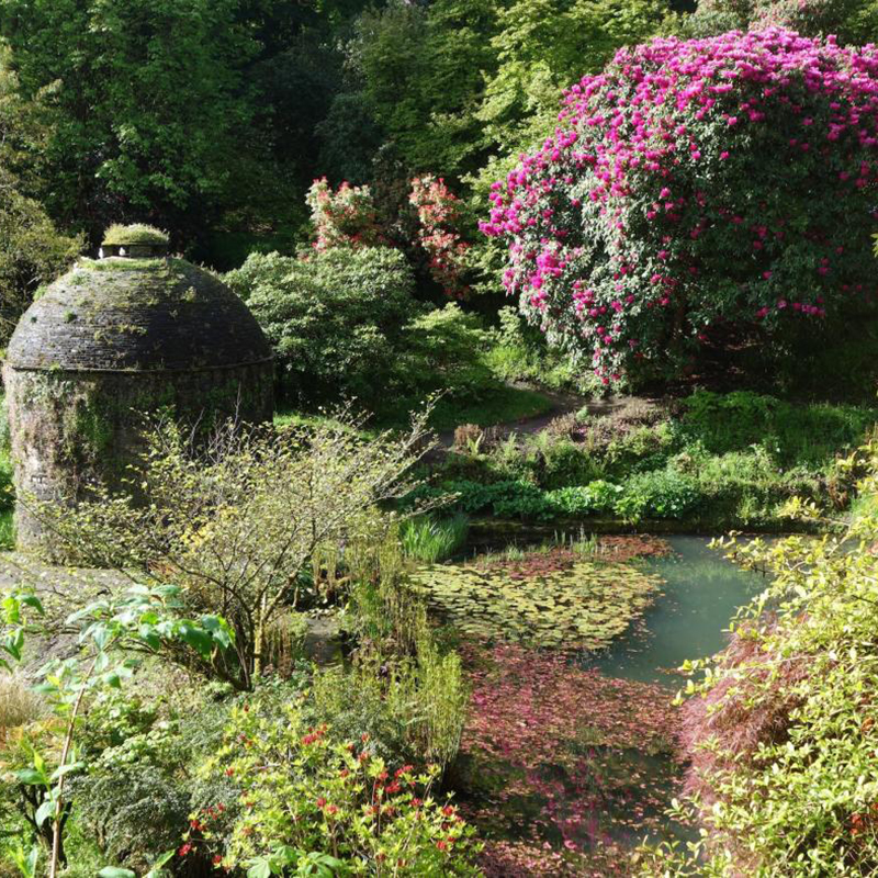 The National Trust - Great Gardens