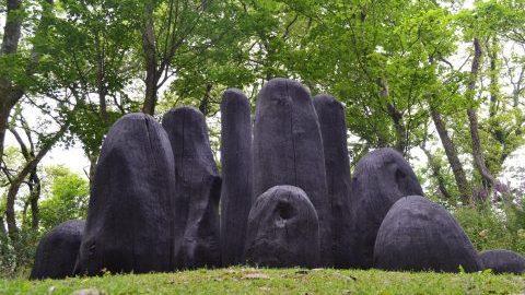 Tremenheere Sculpture Gardens - Great Gardens of Cornwall
