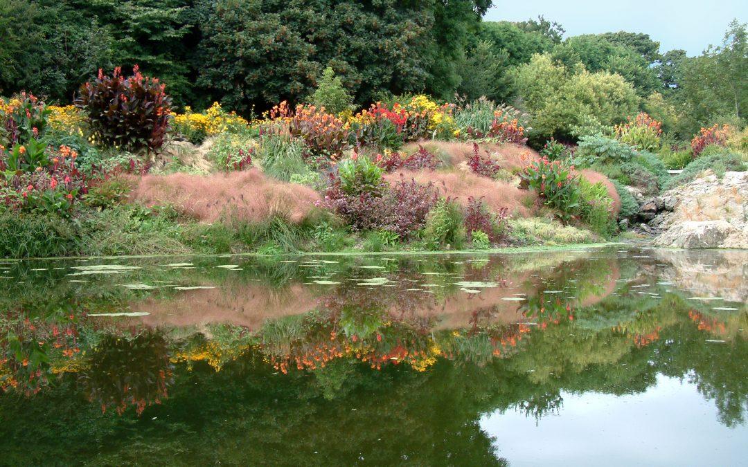 "A Summer ""Fairyland"" for Artists – Bonython Estate Gardens"
