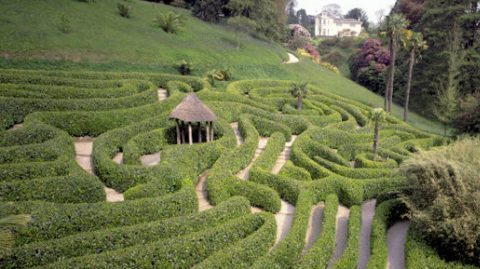 The National Trust - Great Gardens of Cornwall