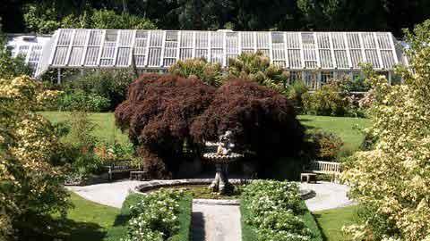 Tregrehan Garden - Great Gardens of Cornwall