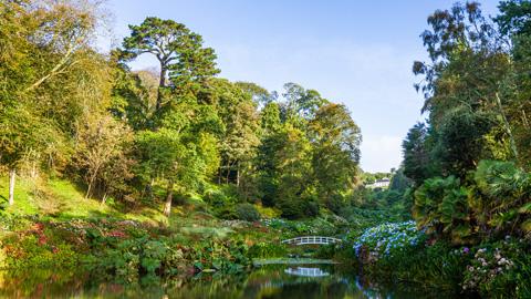 Trebah Gardens - Great Gardens of Cornwall