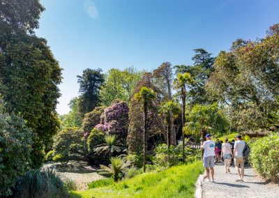 Finding Community Spirit at The Lost Gardens of Heligan